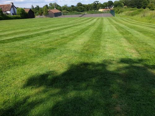 Field Mowing Service